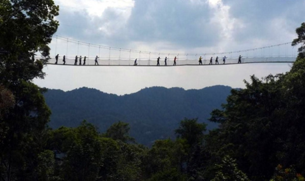 Isumo Falls and Canopy Walkway