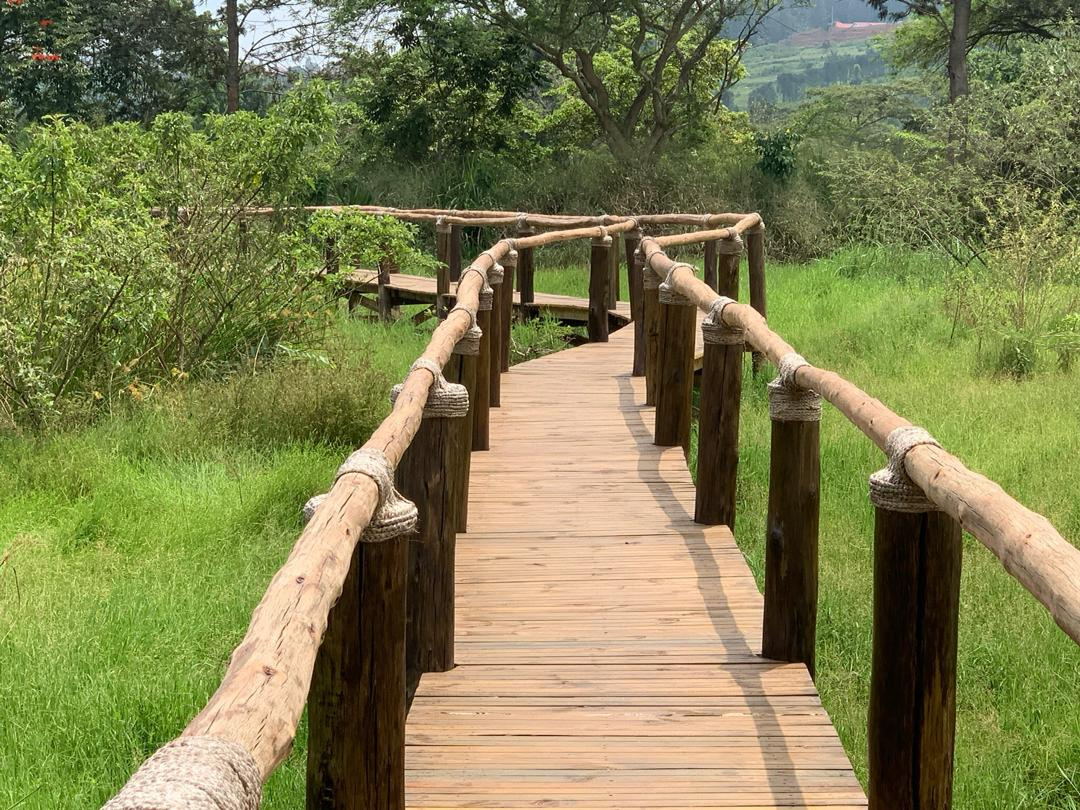 Umusambi Trail: Nature walk in a birding paradise